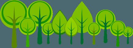 alberi green r